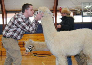 Staff kisses up to alpacas