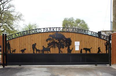 Shelter closes, vet offices still operating