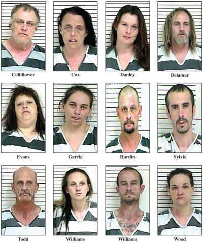drug arrest pics.jpg