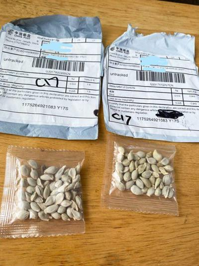 U.S. ag department warns of 'mystery seeds'