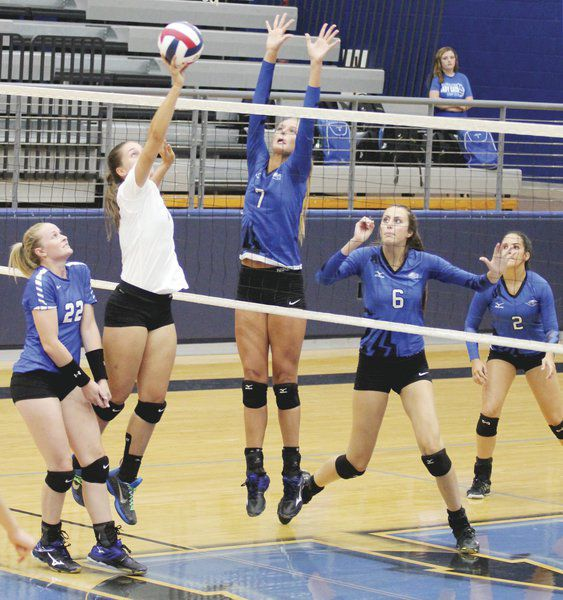 WHS' Lady Roos volleyball shuts down Krum | Local Sports
