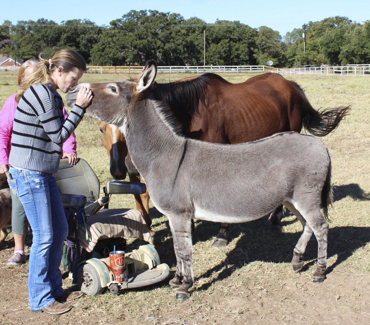 Mother-daughter organization dedicated to equine rescues