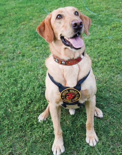 Service to be held for Marine Service Dog Tuesday at WC