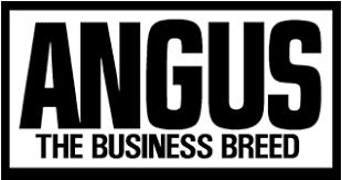 American Angus Association