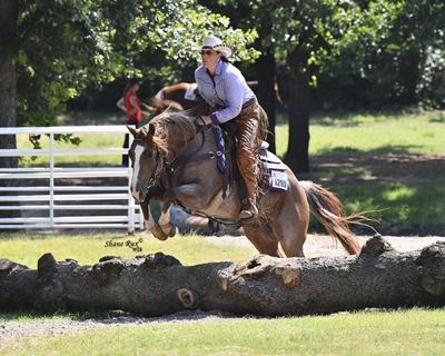 Local wins Bronze Champion title at Versatility Ranch Horse World Championships