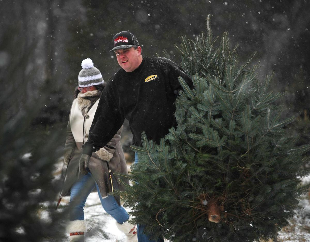 Robert Miller: It takes a lot of effort to grow the perfect Christmas tree