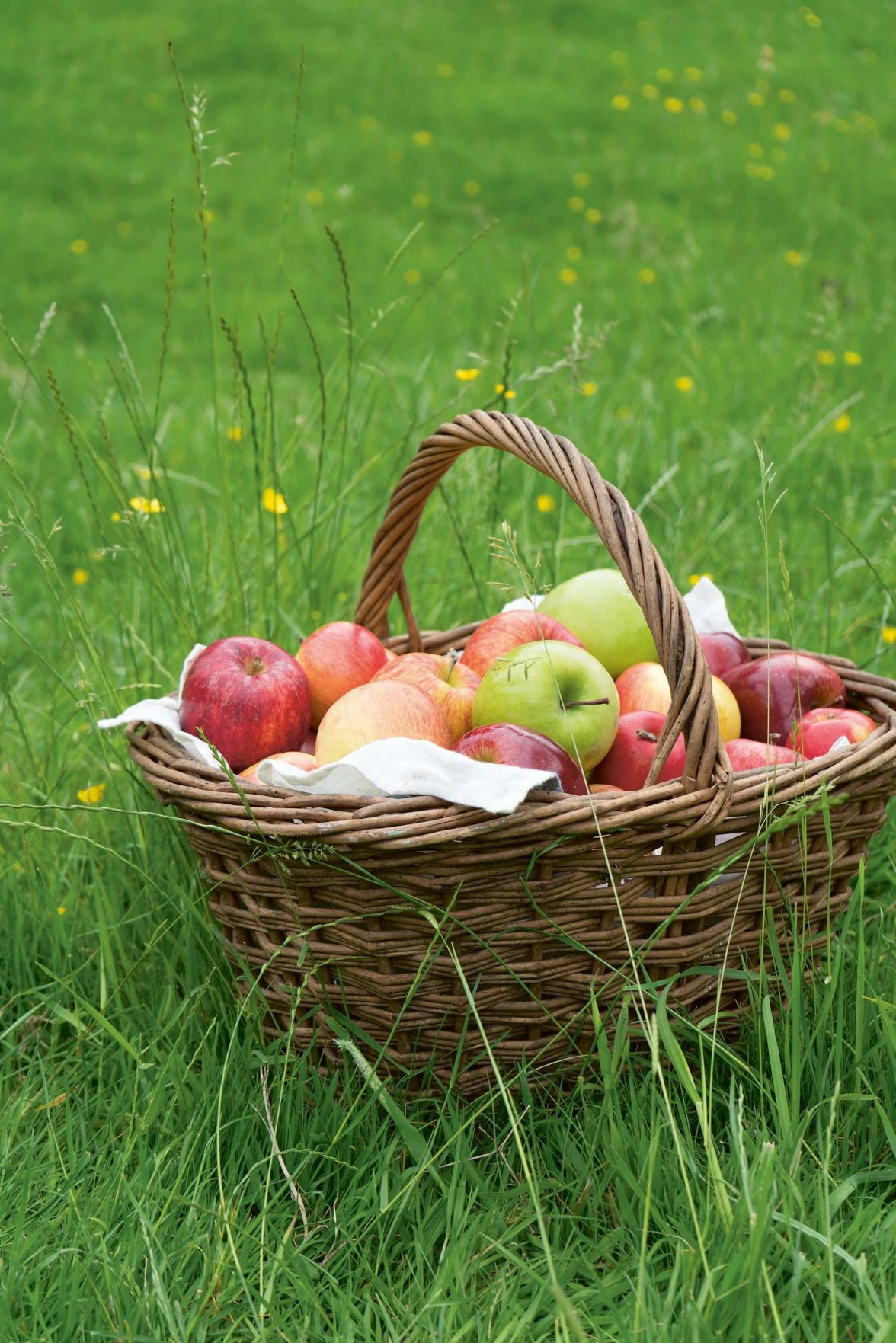 Stephen Fries: More than enough ways to enjoy 'an apple a day'