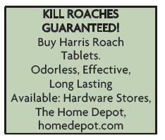 Kill Roaches