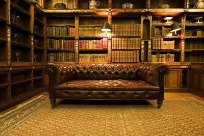 Library leather sofa book design room old library