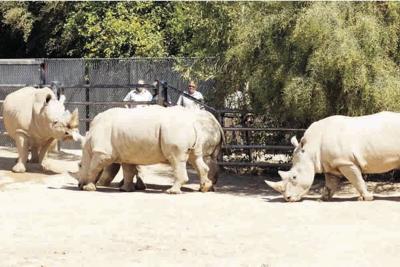 Maoto Wildlife World Zoo, Aquarium & Safari Park