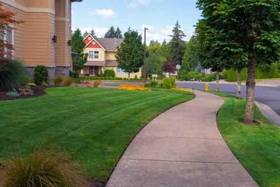 House Green Grass Lawn Front Yard Freshly Mowed
