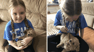 This Girl Is Fighting A Brain Tumor And Is Asking For Messages From Dogs