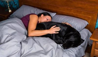 Study Finds Women Sleep Better Next To Dogs Than Humans