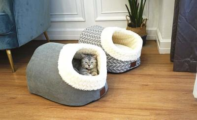 You Can Now Buy A Giant Shoe Bed For Your Pet