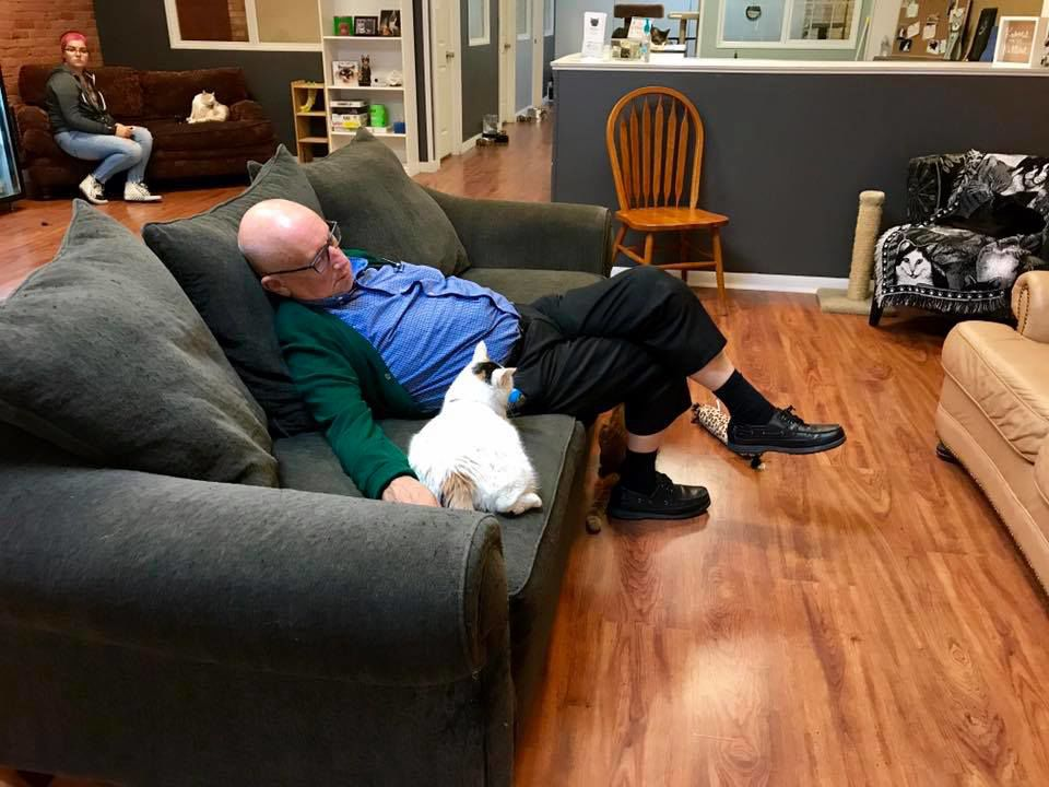 This 75-year-old Naps With Cats At His Local Animal Shelter Every Day