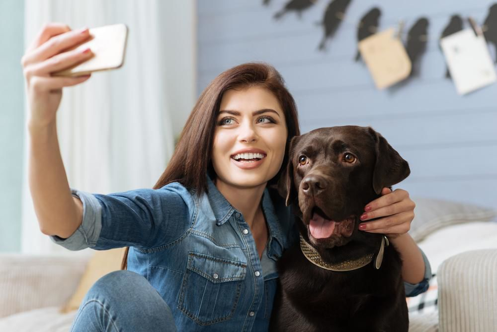 Great dog breeds for millennials