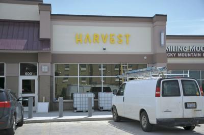 harvest (copy)