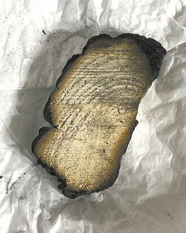 charred wood from wildfire