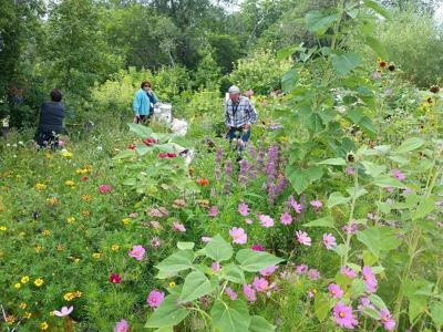 hort club touring a garden
