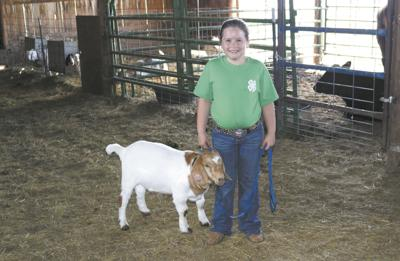 Special barn gives town kids the chance to raise show animals