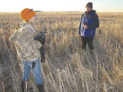 More bust than boom for prairie chickens in Grand Forks County
