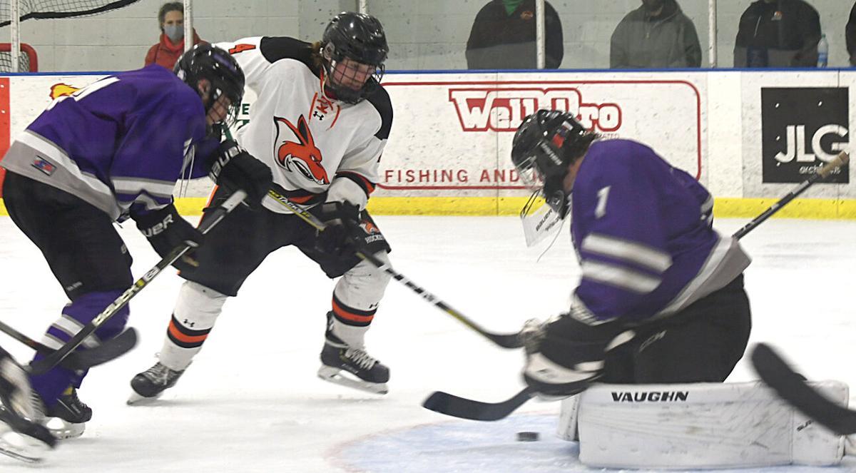 WHS hockey