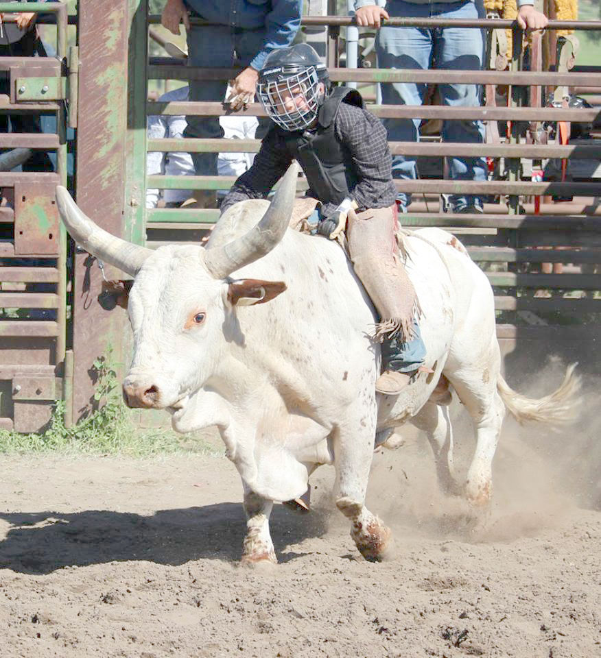 Youth rodeo trying to round up sponsors | Local News Stories