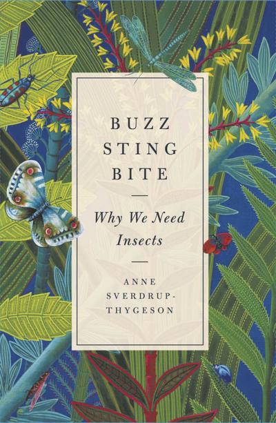 We need insects — here's why