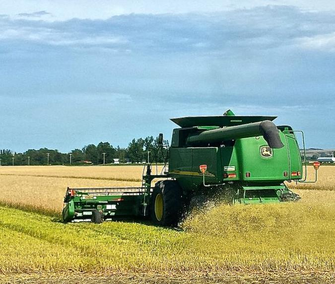Tariff-talk-already-hurting-farmers