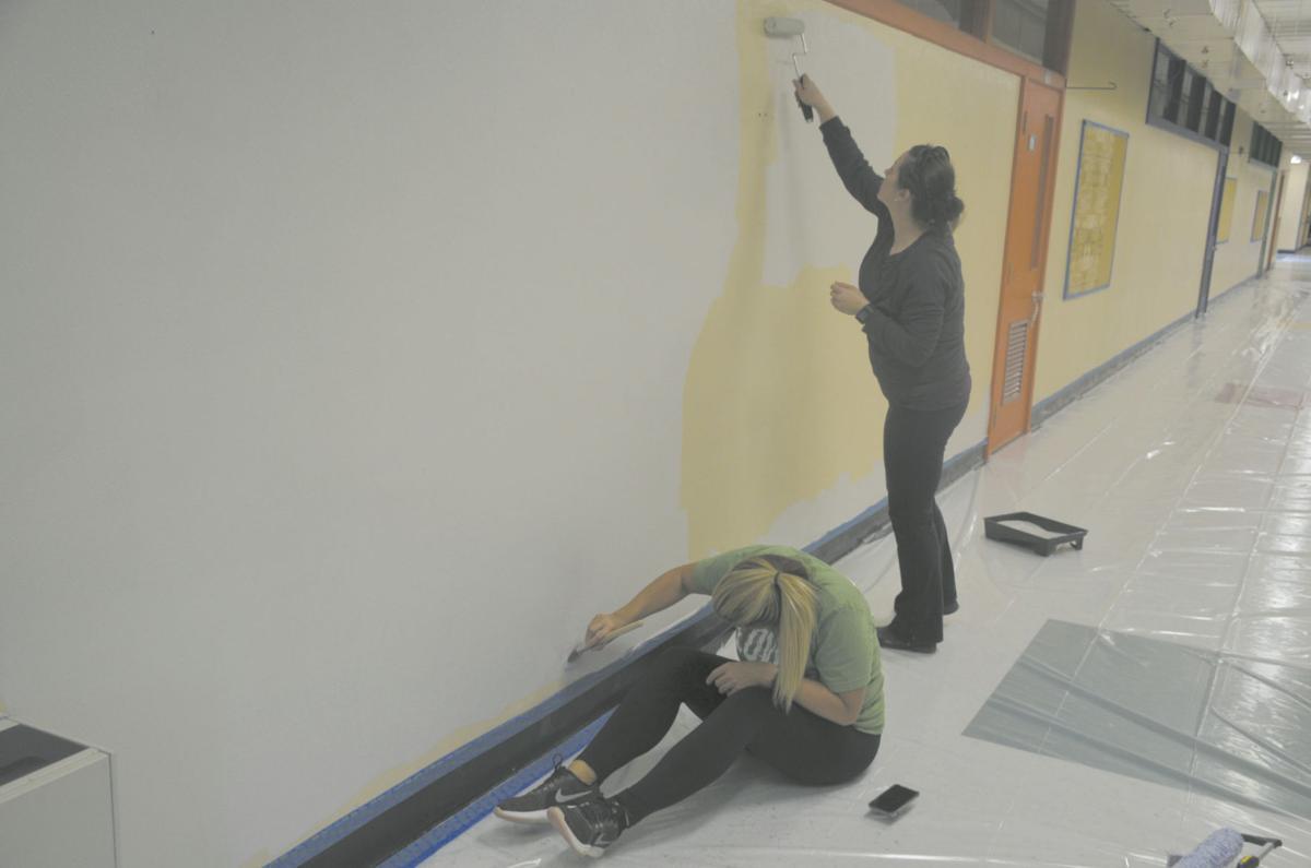 wilkinson paint
