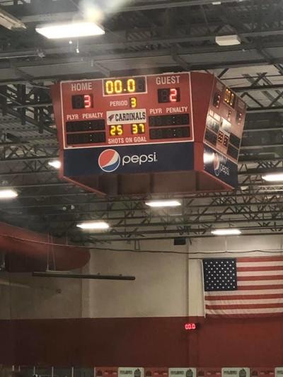 Willmar tops Alexandria in Girls Hockey