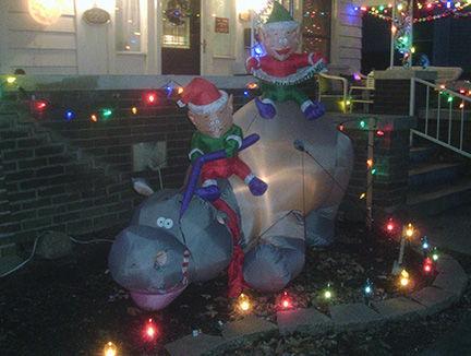 Hippo night 2_WEB.jpg