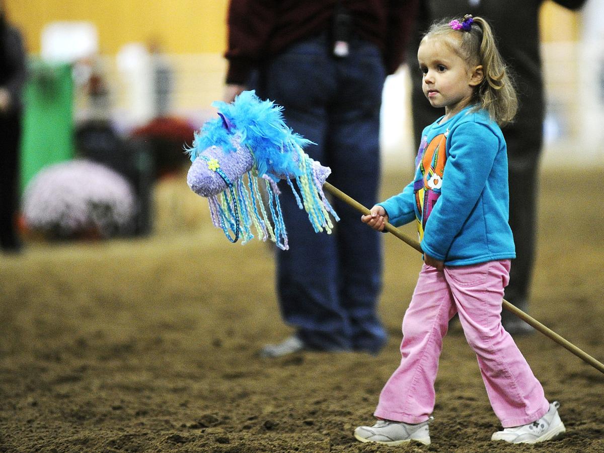 Minnesota Equestrian Center To Host Arabian Horse Show
