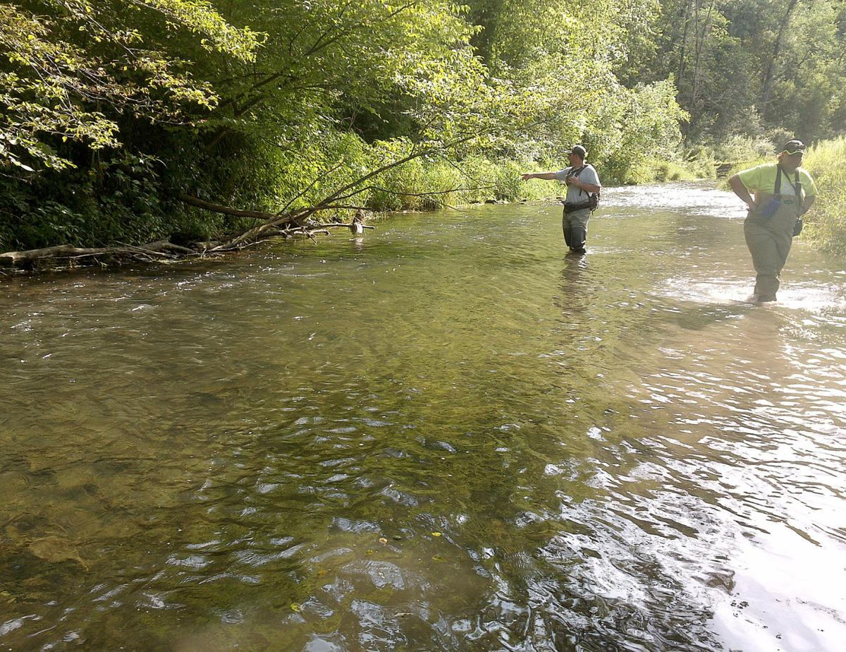 DNR: Whitewater trout stream that saw fish kill is