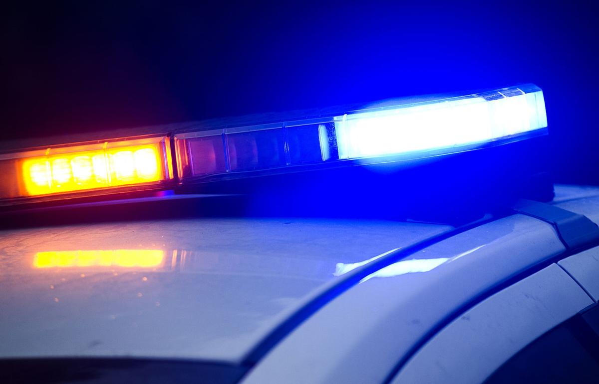 Winona police calls for Monday, Nov  7: Wandering horses