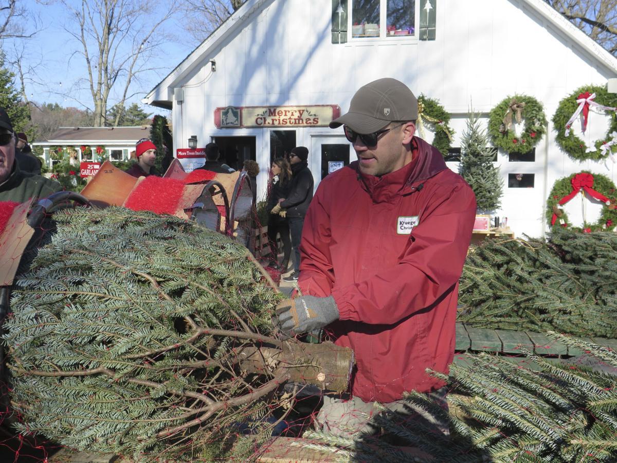 exchange christmas tree farm