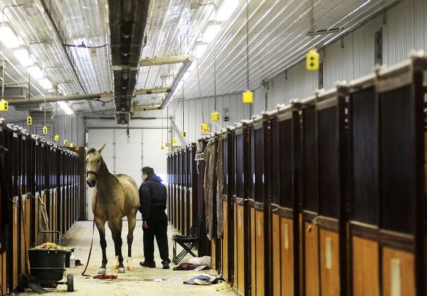 Photos Minnesota Futurity Horse Show 10 6 12 Local
