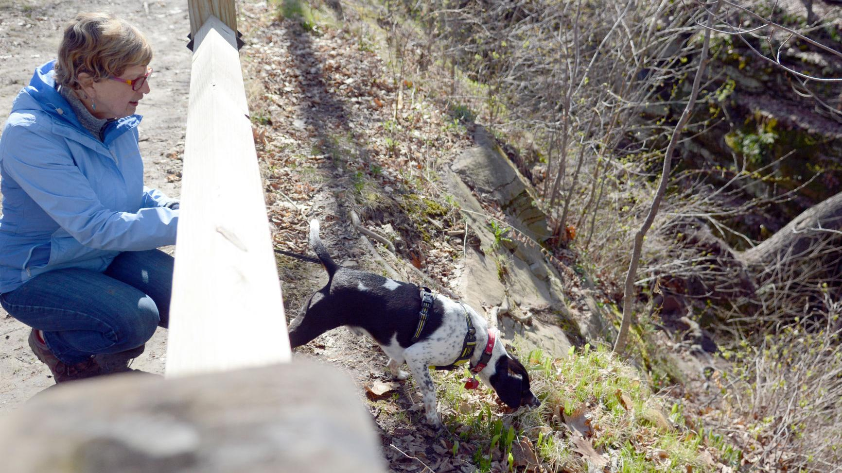 DNR reopens state natural areas near Baraboo after leaving them closed for a year
