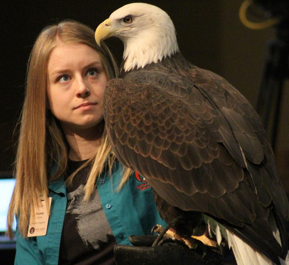 Maddy and Bald Eagle