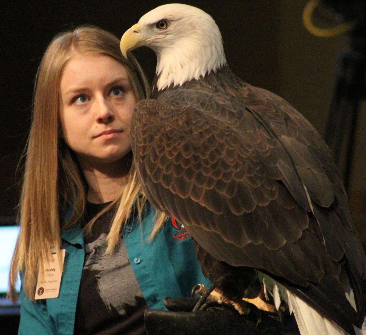 Maddy and Bald Eagle