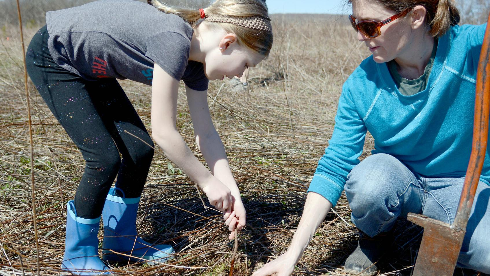 Volunteers plant almost 3,000 trees at Baxter's Hollow near Baraboo