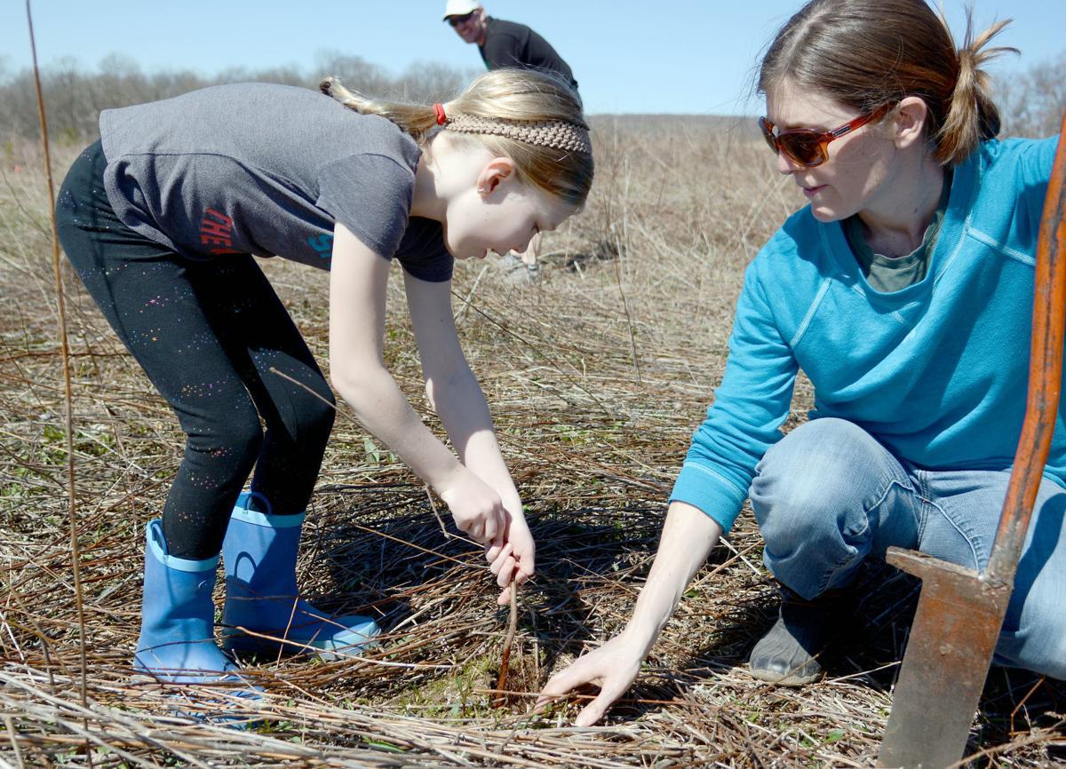 042419-wsj-news-tree-planting