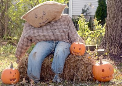 Plenty of Bara-'boos' on tap as Halloween approaches