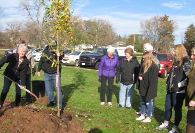 Memorial tree planted, dedicated