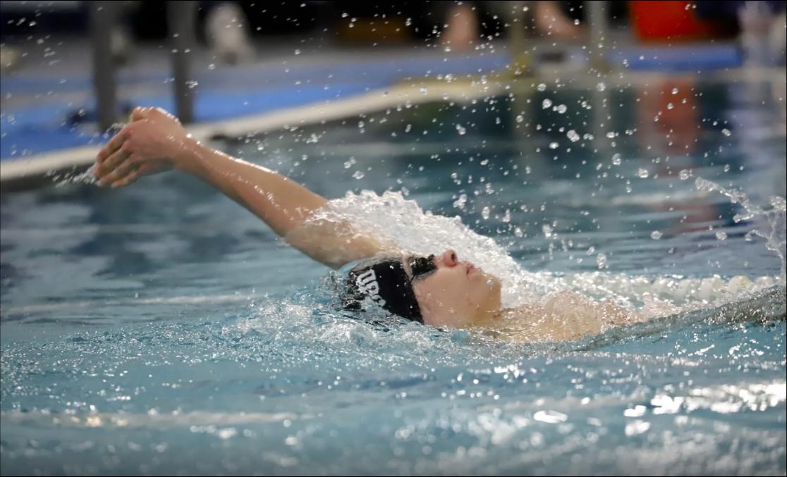 Colin Senke backstroke photo