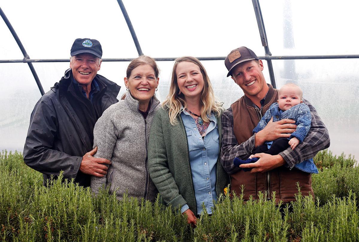 Purple Sage family