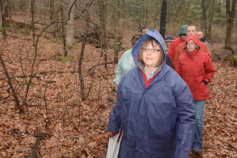 Walker in the woods