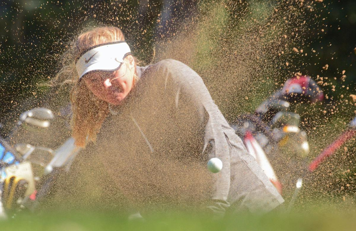 PREP GIRLS GOLF: Wisconsin Dells impresses with runner-up
