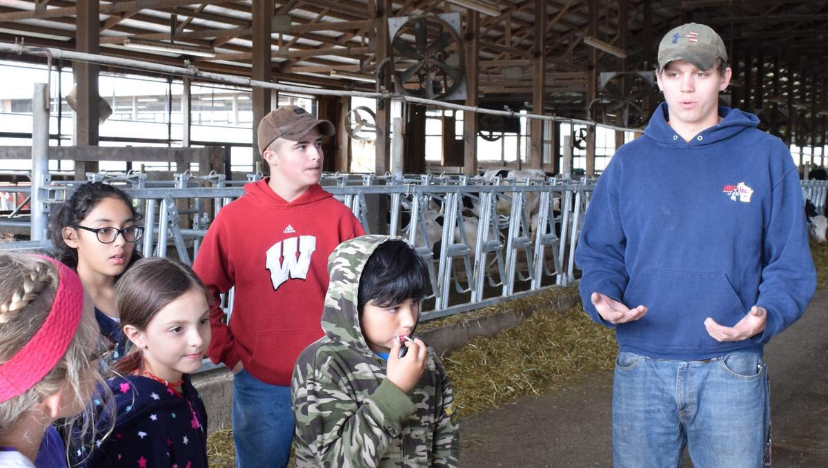 IN DEPTH: Farmers get older as obstacles for young farmers grow