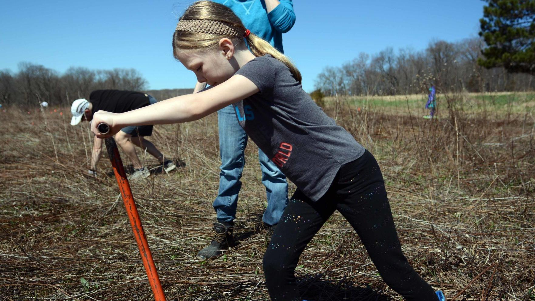 GALLERY: Tree planting for Nature Conservancy on Baraboo Hills, April 20